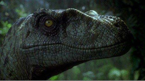 Il temibile Velociraptor